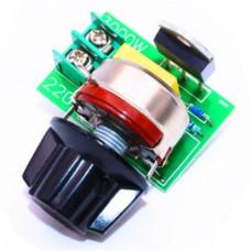 3000W Thyristor SCR Voltage Regulator Temperature Dimmer for Speed - Light AC 220V