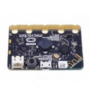 Micro Bit and Advance Development Board