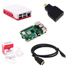Raspberry Pi 4 Model B with 2 GB Ram Starter Kit